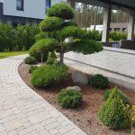 dārza projektēšana